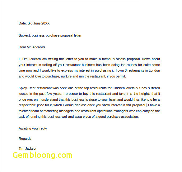 Business Proposal Email Format Beautiful 32 Sample Business