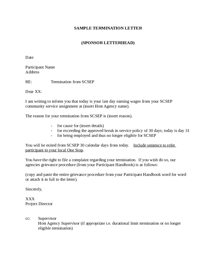 Termination Letter sample, example, template, and format
